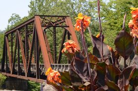 Photo of a rusty bridge with flowers in the foreground